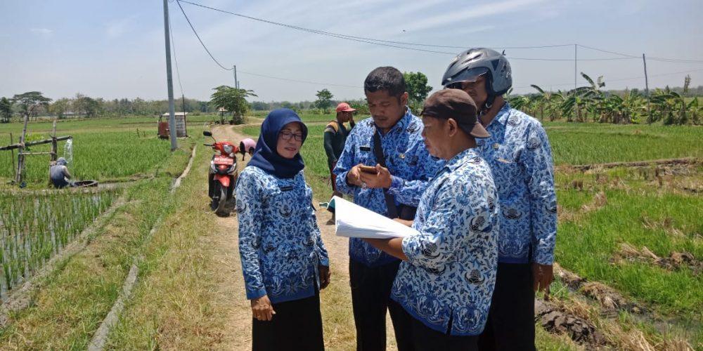 Survey Tanah Eks Bengkok Kelurahan Kuncen Di desa Kranggan kabupaten Madiun